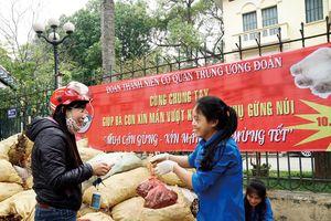 'Giải cứu' gừng tươi Hà Giang