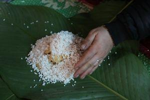 Hà Nội: Gia đình mỗi ngày gói hơn 1000 bánh chưng bán dịp Tết