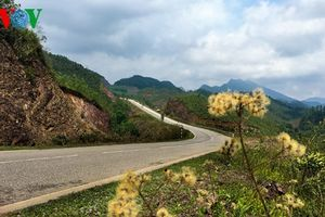Đẹp ngỡ ngàng cung đường biên giới Bắc Phong Sinh - Quảng Ninh