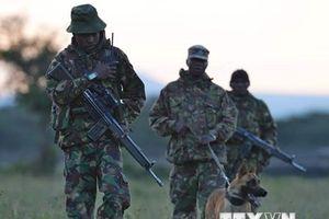 Kenya áp lệnh giới nghiêm tại các vùng gần biên giới với Somalia