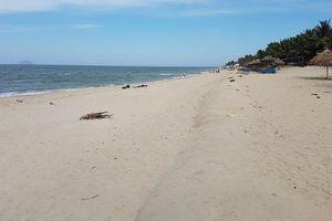 Cửa Đại (Quảng Nam): Cát bồi trở lại ở bãi biển đẹp nhất châu Á