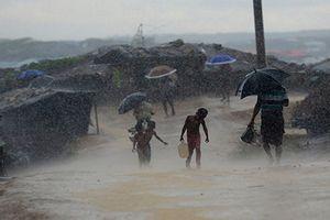 Cảnh ngộ thương tâm của người tị nạn Rohingya