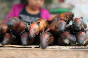 Hà Nội vào mùa thịt chuột: Người dân đổ xô đánh bẫy, kiếm tiền triệu mỗi ngày