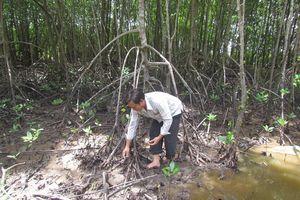 Nâng cao đời sống hộ nhận khoán để giữ rừng