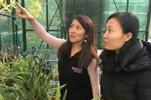 Nữ tiến sĩ gốc Việt trở thành ngôi sao nghiên cứu trị ung thư