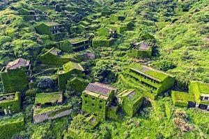 Khám phá 'làng chài xanh' kì diệu ở Trung Quốc