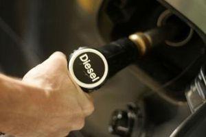 Giá xăng đứng yên, tăng giá dầu