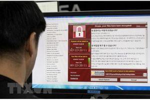 Diễn tập chống mã độc đào Bitcoin qua lỗ hổng phần mềm