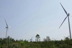 Tân Hoàn Cầu tiếp tục đầu tư điện gió tại Quảng Trị