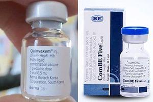 Bộ Y tế yêu cầu tập trung kiểm nghiệm gấp vắc xin thay thế Quinvaxem