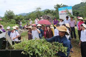 Sản xuất lạc thương phẩm gắn với cơ giới hóa ở Hà Giang