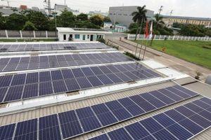 Mong đô-mi-nô trong dự án năng lượng tái tạo