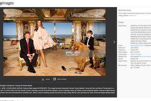 Đệ nhất phu nhân Mỹ Melania Trump kiếm bạc tỷ từ ảnh gia đình