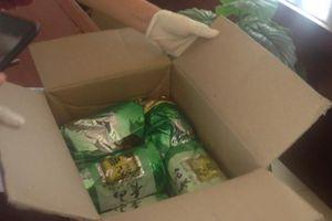 Hải Phòng: Bắt giữ 2 đối tượng mua bán trái phép 5kg ma túy