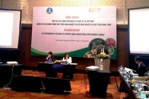 Khoai tây Việt mới đáp ứng được 30-40% nhu cầu trong nước
