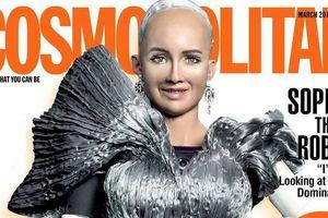 Hành trình ra đời của Sophia - robot công dân đầu tiên trên thế giới!