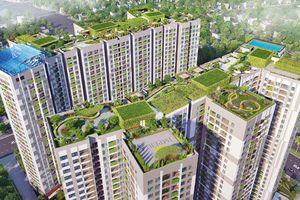'Đỏ mắt' tìm không gian sống xanh giữa nội đô Hà Nội