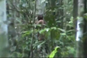 Người sống sót cuối cùng của bộ lạc Amazon sống cô độc hơn 20 năm trong rừng
