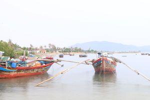 Tiếng kêu cứu từ vịnh Vân Phong