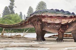 Khủng long bọc giáp sống cách đây 76 triệu năm