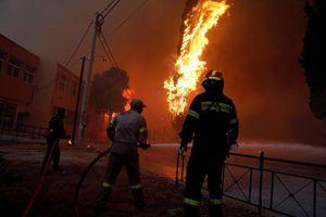 Cháy rừng ở Hy Lạp, 74 người thiệt mạng, 164 người bị thương