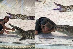 Lý do cá sấu cắn HLV đẫm máu khi đang diễn