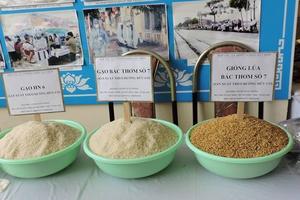 Xuất khẩu nông lâm thủy sản 7 tháng đạt hơn 22 tỷ USD