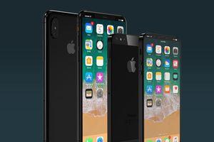 iPhone 11 Plus và iPhone SE Plus bất ngờ lộ diện