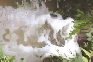 Bình Phước: Nước thải độc hại, người dân kêu cứu
