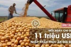 Mỗi ngày chi gần 11 triệu USD nhập khẩu thức ăn gia súc   Bản tin Sự kiện và Con số Công Thương ngày 1/8/2018