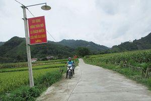 Sắc mới ở nông thôn Thái Nguyên