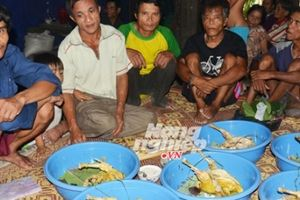 Còn nhiều bí ẩn quanh 'dinh thự' của người rừng 'Tarzan Việt Nam'