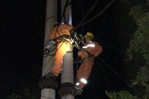 Thanh Hóa khẩn trương khắc phục sự cố lưới điện do ảnh hưởng của bão số 3