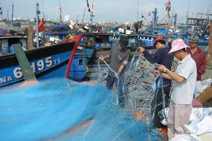 Phó Thủ tướng: Quyết không để EC rút 'thẻ đỏ' thủy sản
