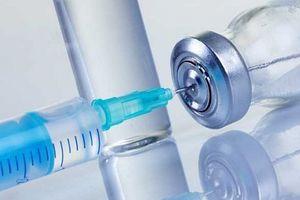Việt Nam không lưu hành vắc-xin phòng dại bị cấm