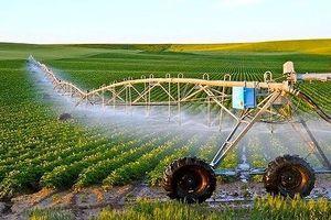 Ưu đãi thuế sử dụng đất cho doanh nghiệp đầu tư vào lĩnh vực nông nghiệp