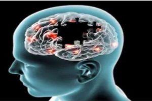 Không muốn tăng nguy cơ mất trí nhớ bạn hãy tránh ngay 6 loại thực phẩm này