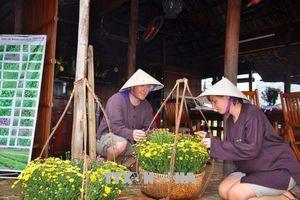 Quảng Nam tạo sản phẩm du lịch riêng để hút khách châu Âu, Bắc Mỹ