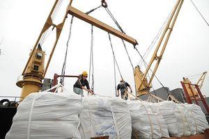 Cần khôi phục lại danh tiếng gạo Việt trên thị trường thế giới