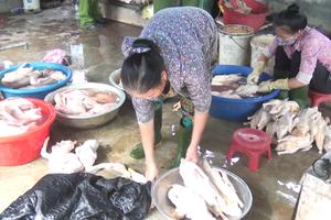 Nghệ An: Bắt cơ sở dùng hàn the để làm trắng, bảo quản vịt