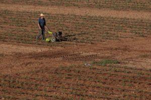 Ủy ban châu Âu hỗ trợ nông dân bị hạn hán ở các nước thuộc EU