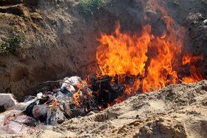 Tiến hành tiêu hủy gần 260kg thực phẩm bị ôi thiu