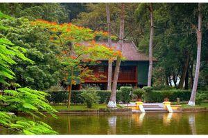 Báo chí Vĩnh Long: 'Góp chút' ươm hoa trong vườn Bác