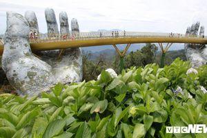 Chiêm ngưỡng cây cầu Vàng độc đáo nằm trên bàn tay khổng lồ ở Đà Nẵng
