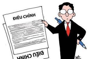 Việt Nam cần một án lệ để xuyên phá 'bức màn che công ty'
