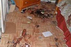 'Nghịch tử' giết cha mẹ rồi mở tiệc trác táng suốt đêm
