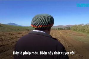 Tổng thống Nam Phi muốn 'giành đất' cho nông dân da màu từ chủ đất da trắng