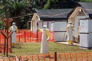 Dịch Ebola ở Congo đặt các nước láng giềng vào tình trạng báo động