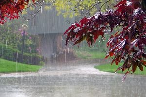 Lượng mưa đang ảnh hưởng lớn tới chất lượng không khí tại Hà Nội