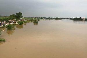 Hà Nội: Rút báo động 2 trên sông Bùi